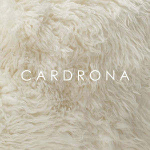 Wilson & Dorset New Zealand Wool sheepskin - cardrona
