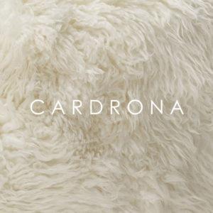 Wilson & Dorset New Zealand Wool sheepskin - cardrona